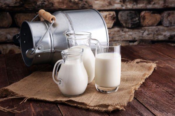 kandungan nutrisi susu kambing
