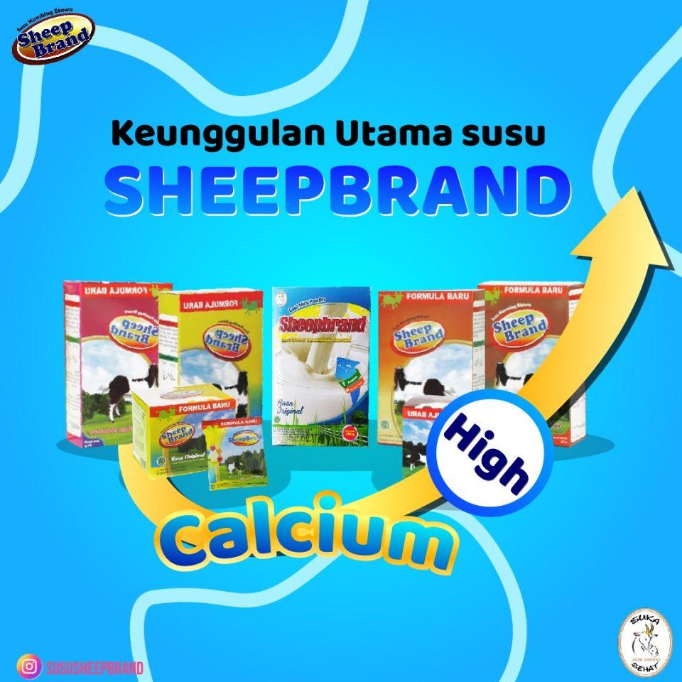 Keunggulan Susu Sheepbrand : Tinggi Kalsium