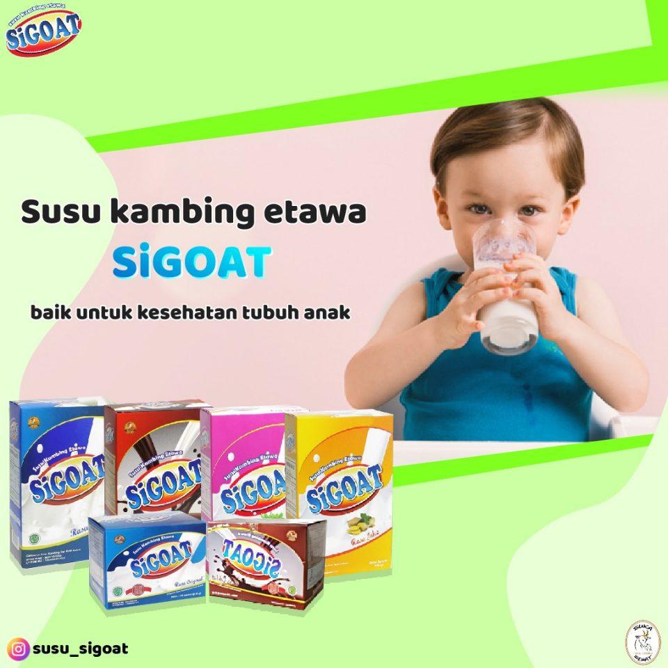 Manfaat Susu Kambing bagi Kesehatan Tubuh Bayi